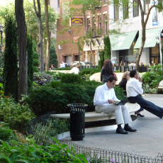 A popular park in the heart of the financial district