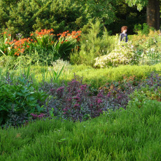 Using contrast and focal points in the large heather bed