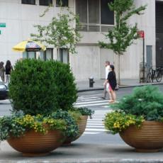 Greening Broadway at 65th Street