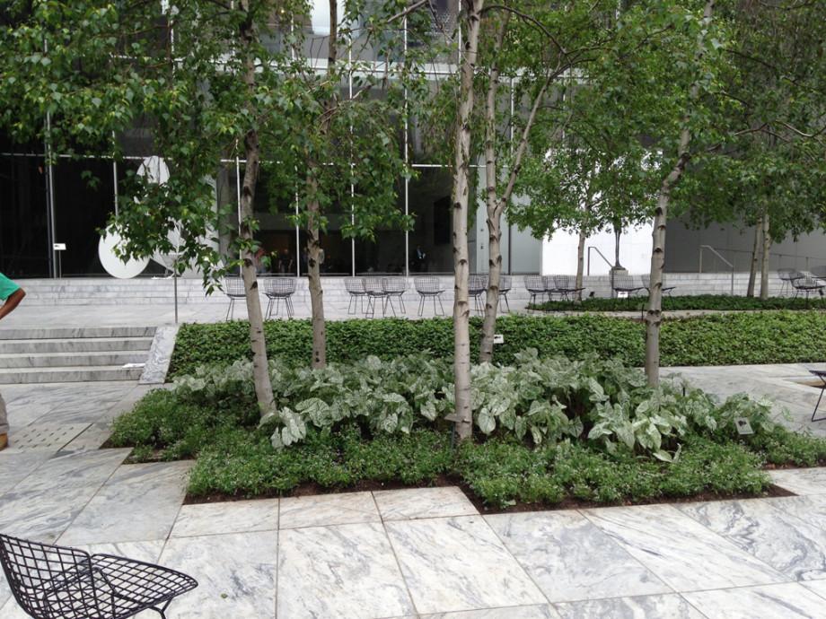 Moma Sculpture Garden Ronda M Brands Garden Design
