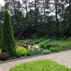 First season, following addition of shrubs and perennials.